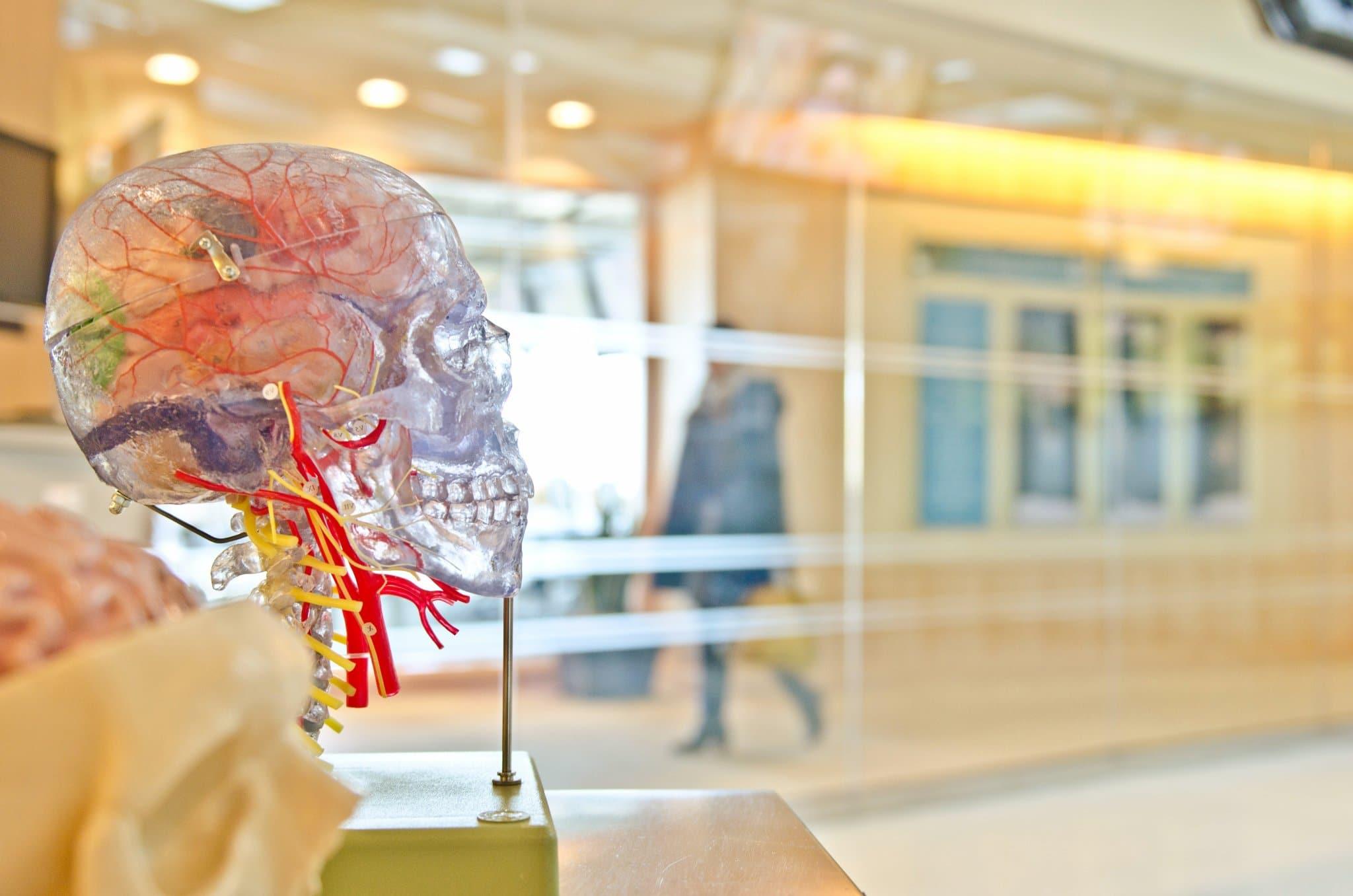 cerebro-enfermeria-militar